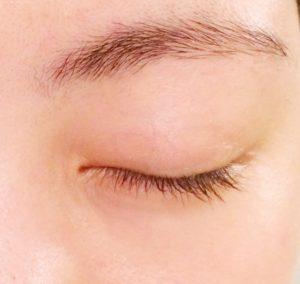 眉毛の本数を数えている画像